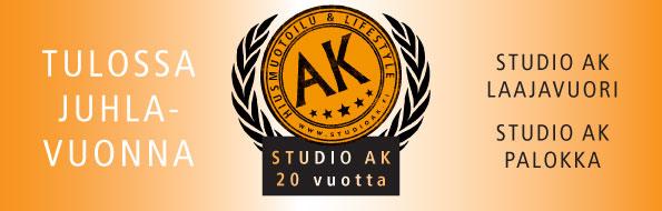 Studio AK Palokka ja Laajavuori aukeavat helmikuussa